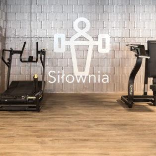 siłownia-witan-zastosowanie